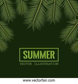 green color background with side border decorative palm leaves and rectangular frame with summer text