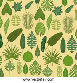 pattern color set decorative of different types green leaves