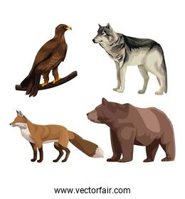 Wild animals colorful drawing