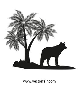Wolf and palm tree black silhouette