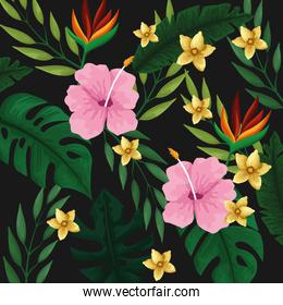 Tropical summer background pattern