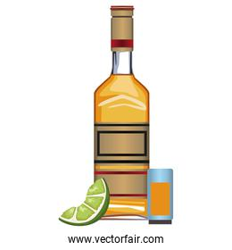 Tequila bottle and shot