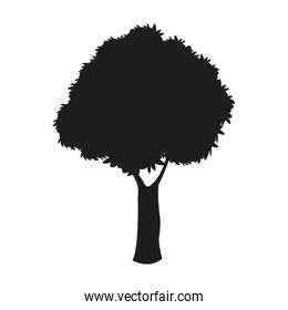silhouette tree woody nature dark stem design