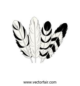 feather free spirit rustic decoration differents