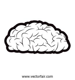 brain mind idea knowledge image outline