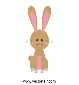 cute easter bunny sitting happy animal