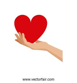 hand holding heart blood donation