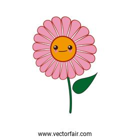 kawaii pink daisy flower design