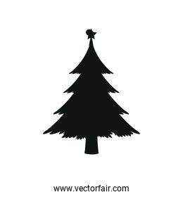 silhouette pine tree with star christmas