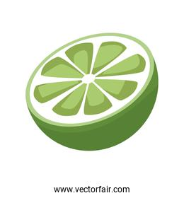 slice lemon citrus fruit vitamins