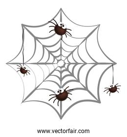 happy halloween spiders in spiderweb