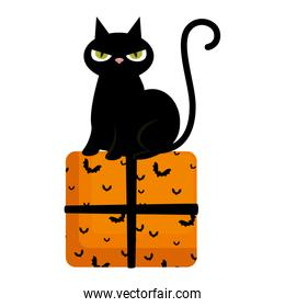 halloween black cat with gift character