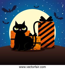 halloween black cat with gifts on night