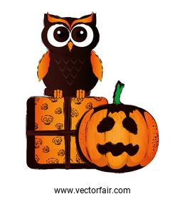 happy halloween giftbox with owl and pumpkin