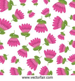 beautiful roses pattern background