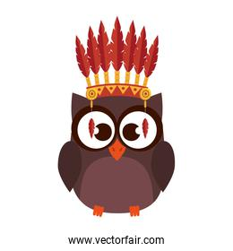 owl with indigenus feathers crown