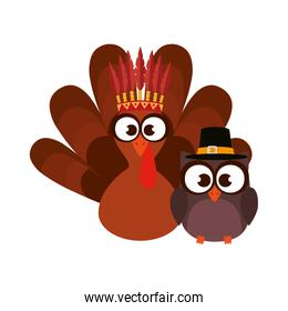 owl and turkey with thanksgiving hats