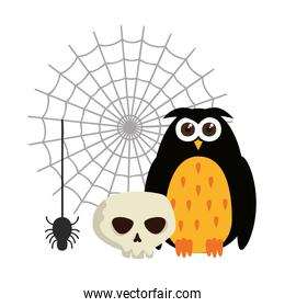 happy halloween owl with skull and spider