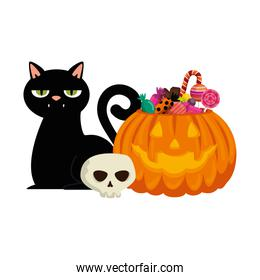 happy halloween pumpkin with candies and cat