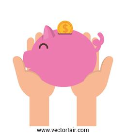 hands lifting piggy savings with coins dollars