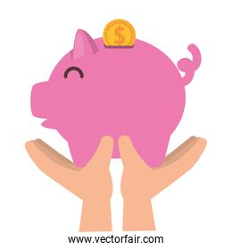 hands lifting piggy savings with coins