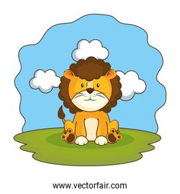 cute lion in the camp
