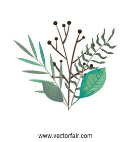 branch with leaves nature isolated icon