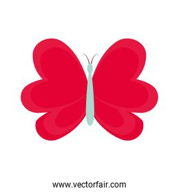 cute butterfly decorative icon
