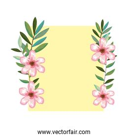 frame with flowers and leafs decoration