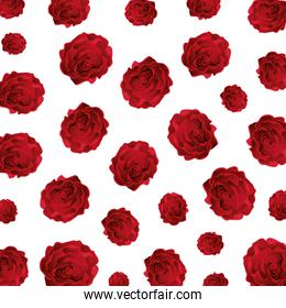beauty roses pattern background