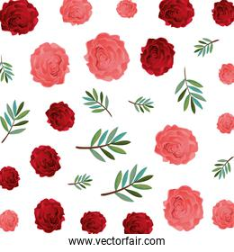 beauty rose with leafs pattern