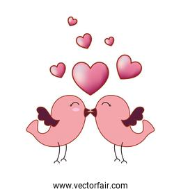 love card with cute birds couple and hearts