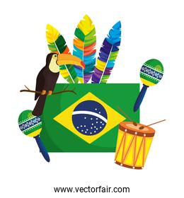 brazilian flag with culture icons