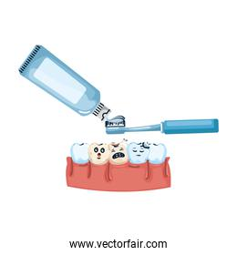 human teeth with toothbrush and paste