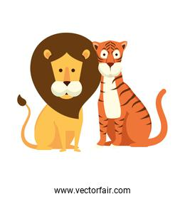african lion with tiger