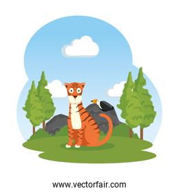 african tiger in the field