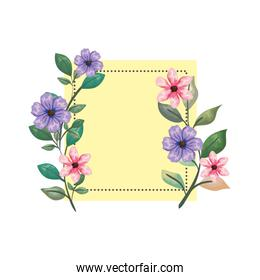 square frame with beautiful flowers