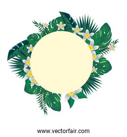 circular frame with tropical flowers and leafs decoration