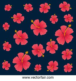 exotic tropical flowers pattern