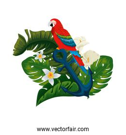 tropical and exotic parrot in anchor with floral decoration