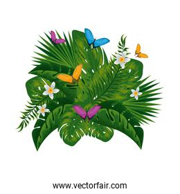 heliconia flower tropical plant with leafs and butterflies