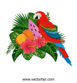 exotic parrot with tropical fruits and floral decoration