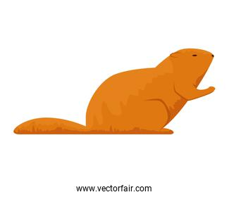 cute otter rodent animal icon