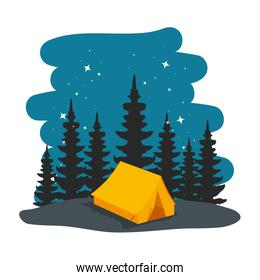 camping zone with yellow  camping tent at night scene