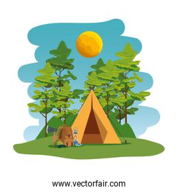 camping zone with camping tent and equipment scene
