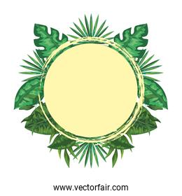 exotic and tropical leafs with branches circular frame