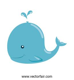 cute little whale character icon