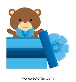 gift with cute little bear teddy and bowtie
