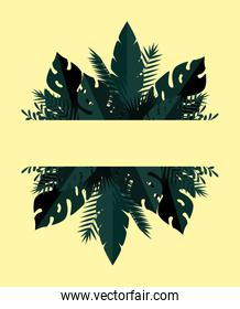 summer frame with tropical and exotic leafs plants
