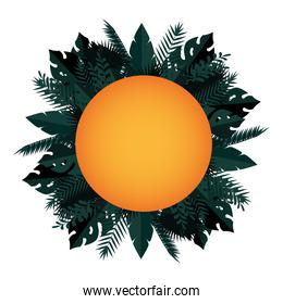 summer circular frame with tropical and exotic leafs plants